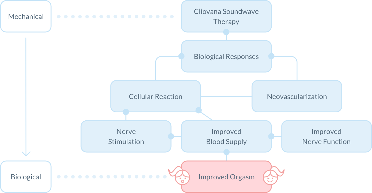 How Cliovana works